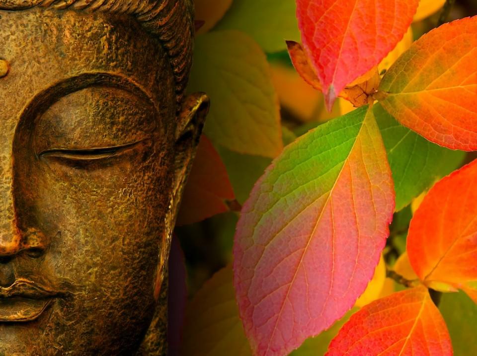 תוצאת תמונה עבור buddha in the fall