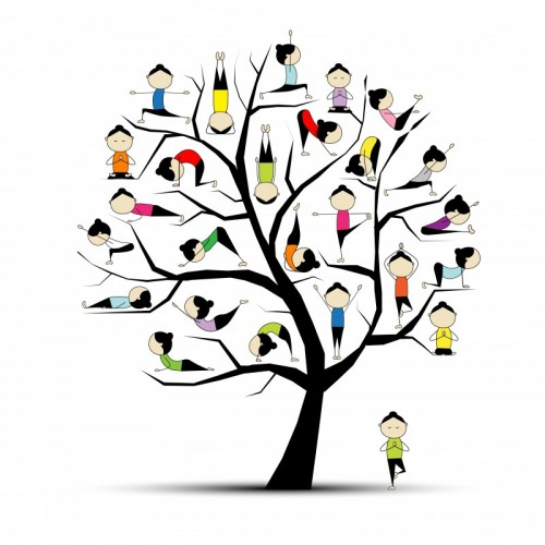 Asana Fig In Tree