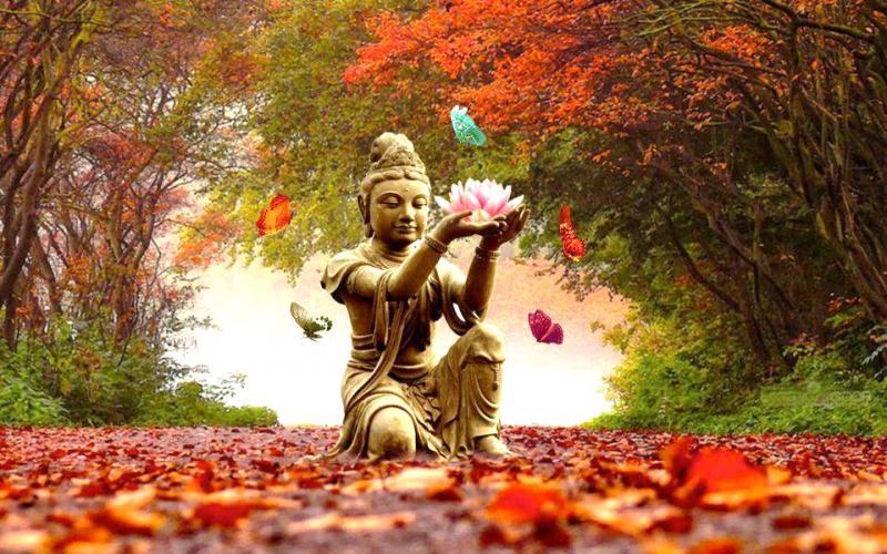 Buddha Breath